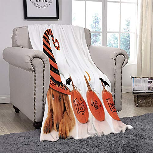 YOLIYANA Light Weight Fleece Throw Blanket/Halloween,Cute Puppy Wearing a Witch Hat Trick or Treat Little Bats Festive Funny,Orange Black Brown/for Couch Bed Sofa for Adults Teen Girls Boys ()