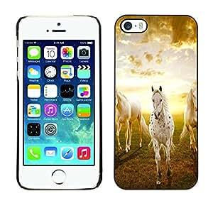 Be Good Phone Accessory // Dura Cáscara cubierta Protectora Caso Carcasa Funda de Protección para Apple Iphone 5 / 5S // Clouds Horses Nature Sunset Mustang