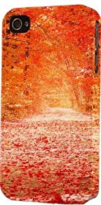 Autumn Fall Colors Walkway Plastic Snap On Decorative iPhone 5c Case