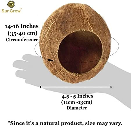 Durable Habitat with Hanging Loop Coco Texture Encourage Exercise Mini Condo for Pocket Pets Nesting Home and Feeder SunGrow Hamster House with Ladder Raw Coconut Husk