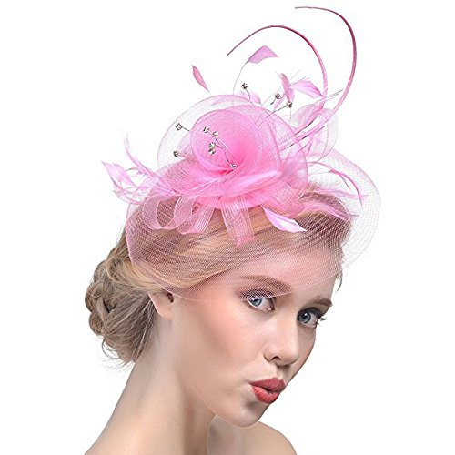 Hilary Ella Womens Feather Mesh Net Sinamay Fascinator Hat with Hair Clip Tea Party Derby