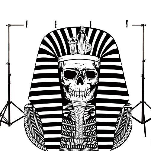 King Stylish Backdrop,Egyptian Pharaoh Ruler Mummy Skull Skeleton Statue for Ancient Egypt Lovers Print for Photography,39.3