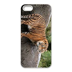 Tiger And Rock Hight Quality Plastic Case for Iphone 5s