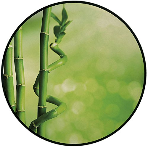 Printing Round Rug,Green,Bamboo Stems Nature Ecology Sunbeams Soft Spring Scenic Spa Health Relaxation Decorative Mat Non-Slip Soft Entrance Mat Door Floor Rug Area Rug For Chair Living Room,Green Lig by iPrint (Image #1)