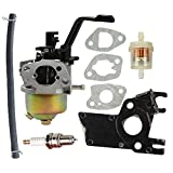 Butom Carburetor with Insulator Fuel Filter Line for DuroMax PowerMax XP3500 XP4400 XP4400-CA XP4400E XP4400E-CA MX4500 MX4500E 196CC 200CC 6.5HP 7HP Gasoline Generator