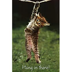 Kitten - Hang In There Poster 22 x 34in