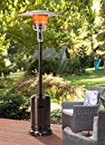 Sunjoy Lawrence Floor-Standing Patio Heater, 88' Bronze Hammered...
