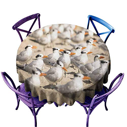Acelik Indoor/Outdoor Round Tablecloth,Birds on The South Beach,Party Decorations Table Cover Cloth,60 INCH