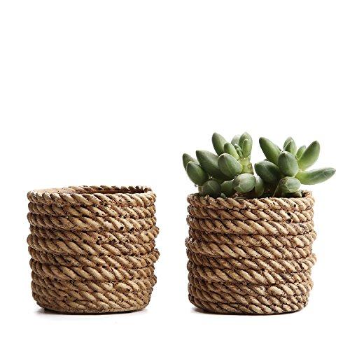 Rachel's choice 3.25″Rope Surrounded Shape Sucuulent Cactus Plant Pots Flower Pots Planters Containers Window Boxes Brown Set of 2