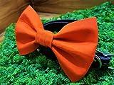Orange Solid Pet Bow Tie