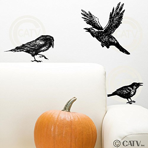 Halloween Crow Raven set of 3 vinyl lettering decal home decor wall art sticker birds ()