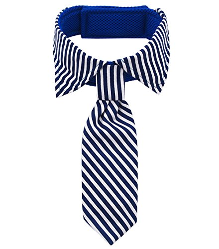 Professional Stripe Tie - Amajiji Pets Bowtie, Formal Stripe Adjustable Pet Bow Tie and Collar for Only Large Dogs (Blue)