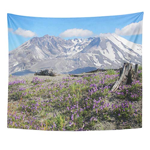 Semtomn Tapestry Artwork Wall Hanging Purple Pacific Mount St Helens Landscape Northwest Volcano Photography 60x80 Inches Tapestries Mattress Tablecloth Curtain Home Decor Print -