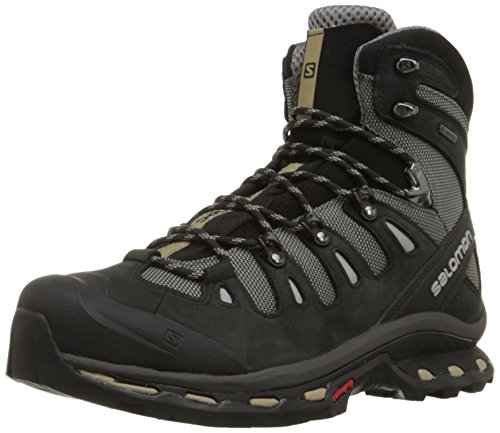 Salomon Men's Quest 4d 2 Gtx Backpacking Boot, Detroit/Black/Navajo, 8 M US