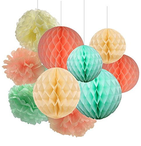 Qian's Party 12pcs Mint Peach Cream Tissue Paper Pom Pom Mint Honeycomb Balls Baby Shower Decorations Peach Paper Flowers for Bridal Shower Decoration, First Birthday Decoration Party (Paper Honeycomb Ball)