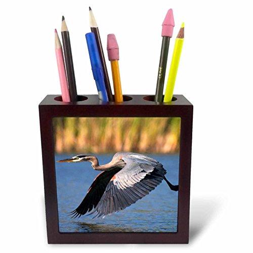 3dRose USA, California, San Diego, Lakeside Blue Heron Flying Tile Pen Holder, 5
