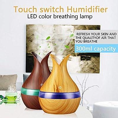 pairris Mini humidificador atomizador ultrasónico USB purificador ...