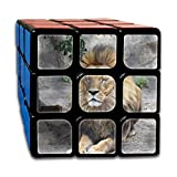 AVABAODAN Sleeping Lion Rubik's Cube 3D Printed 3x3x3 Magic Square Puzzles Game Portable Toys-Anti Stress For Anti-anxiety Adults Kids