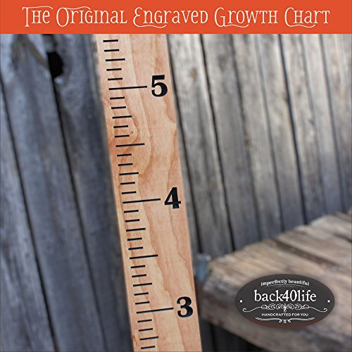 Back40Life Premium Engraved Growth Chart product image