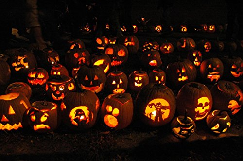 Quality Prints - Laminated 28x18 Vibrant Durable Photo Poster - Halloween - Pumpkin Festival, Franklin County Some Frightening, Others Funny, These Jack-o-Lanterns Bring Light to a Dark October ()