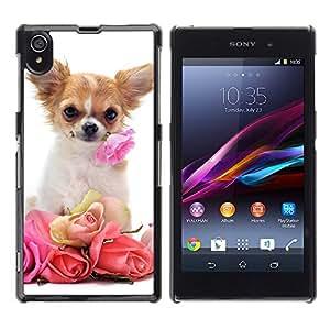 VORTEX ACCESSORY Hard Protective Case Skin Cover - Chihuahua roses valentine dog pet - Sony Xperia Z1 L39 C6902 C6903 C6906 C6916 C6943