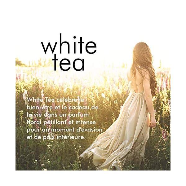 Elizabeth Arden – White Tea – Coffret Eau de Toilette Vaporisateur & Crème Corps Douceur Ultime – Senteur Florale…