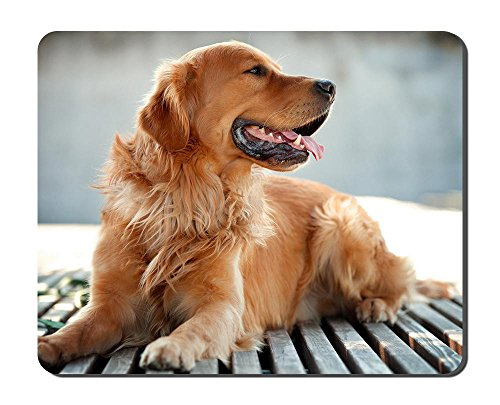 (Golden Retriever Dog Animal Picture Game Office Mouse Pad (8.2x10.2inches) )