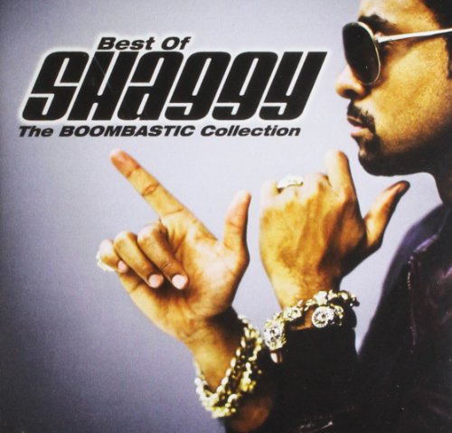 Shaggy - Big Trip 95 - 96 - Zortam Music