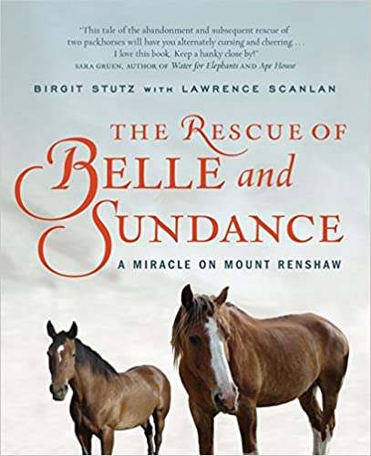 The Rescue of Belle and Sundance A Miracle on Mount Renshaw