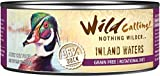 Wild Calling Canned Cat Food - Inland Waters 96% Duck - 5.5 oz - 24 ct by Wild Calling
