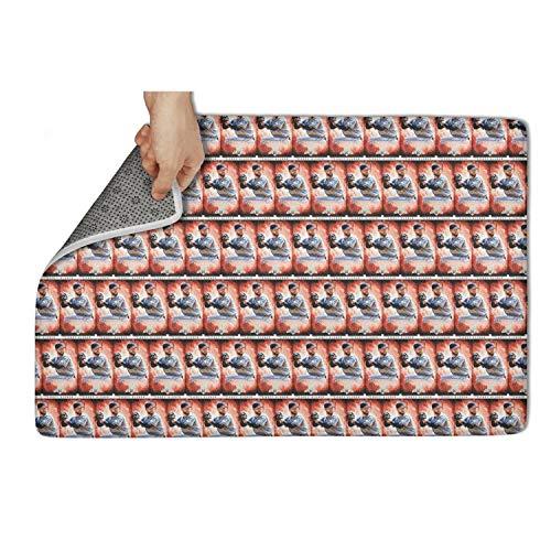 (Popular Door Mats Doormat Floormat Fashion pet Bedroom mat 31