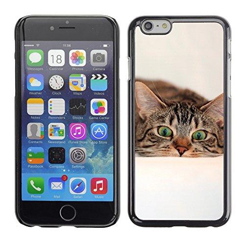"Premio Sottile Slim Cassa Custodia Case Cover Shell // V00003891 surpris cat 2 // Apple iPhone 6 6S 6G 4.7"""