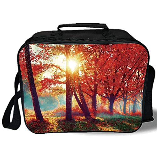 Tree 3D Print Insulated Lunch Bag,Autumnal Foggy Park Fall Nature Scenic Scenery Maple Trees Sunbeams Woods,for Work/School/Picnic,Orange Yellow Teal
