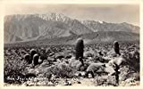 Coachella Valley California San Jacinto from Devils Garden real photo pc Z9545