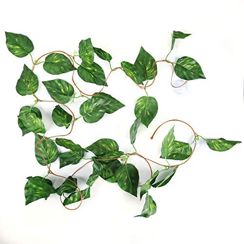 Silk Jungle Plants (SLSON Repta Vines Silk Reptile Vine Fake Jungle Terrarium Plants for Bearded Dragons,Lizards,Geckos,Snake Pets and Other Reptiles Amphibians Decorations,with Suction Cups,7.8 Feet Length,Scindapsus)
