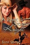 Bargain eBook - A Dark   Stormy Knight