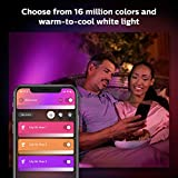 Philips Hue White & Color Ambiance Lily XL