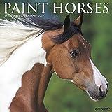 img - for Paint Horses 2019 Wall Calendar book / textbook / text book