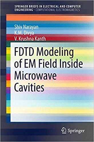 FDTD Modeling of EM Field inside Microwave Cavities (SpringerBriefs in Electrical and Computer Engineering)