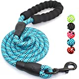 #3: 5 FT Strong Dog Leash with Comfortable Padded Handle and Highly Reflective Threads for Medium and Large Dogs (Blue)