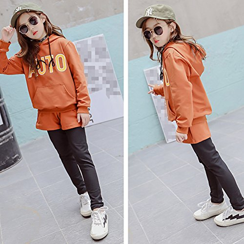M&A Girls Hoodie and Pants 2 Piece Clothing Set Tracksuit for 3-13T by M&A (Image #5)