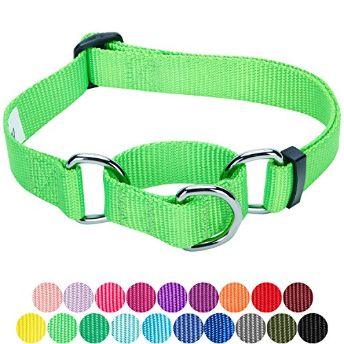 Blueberry Pet 19 Colors Safety Training Martingale Dog Collar, Neon Green, Small, Heavy Duty Nylon Adjustable Collars for - Green Show Collar Dog