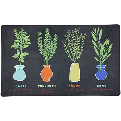 1'6 x 2'6 Cute Casual Comfort Little Herb Garden Black Multi Color Door Mat, Polyester Beautiful Cozy Graphic Hippy Nature Basil Rosemary Thyme Sage Fresh Area Rug Look Perfect For Your Home Decor