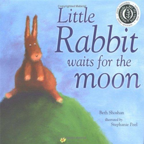 Read Online Little Rabbit Waits for the Moon (Mini Board Books) pdf