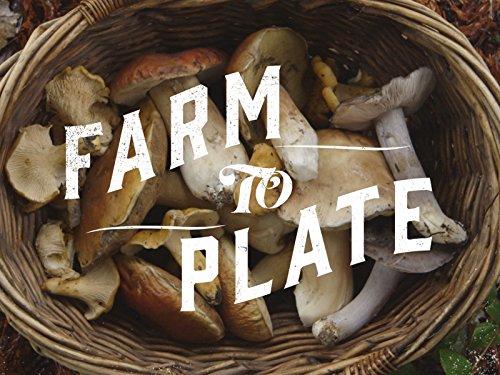 Mushroom Foraging - Plate State