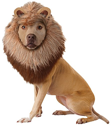 UHC Animal Planet Lion Dog Plush Mane Headpiece Outfit Halloween Pet Costume, L (Lion Dog Costume Animal Planet)