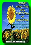 img - for WHAT ARE THE KEY FACTORS OF SUCCESS---
