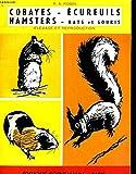 cobayes ecureils hamsters rats et souris elevage te reproduction