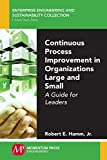 img - for Continuous Process Improvement in Organizations Large and Small: A Guide for Leaders book / textbook / text book