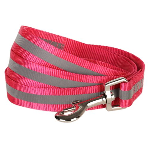 Blueberry Pet 1-Inch by 4-Feet Reflective Dog Lead, Large, French Pink